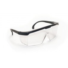 HORNETS Eyewear - Clear Lens, Black Frame w Polybag
