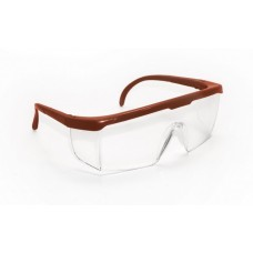 HORNETS Eyewear - Clear Lens, Red Frame w Polybag