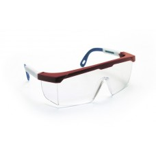 HORNETS Eyewear - Clear Lens, Red,White,Blue Frame w Polybag
